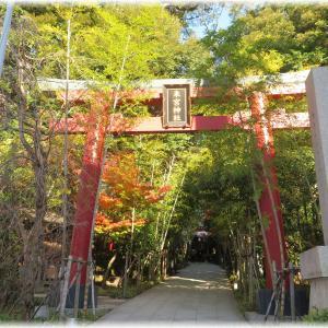 静岡県熱海市『来宮神社(きのみやじんじゃ)』に詣でる。