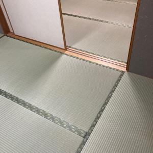 東大阪市箱殿町のお客様 熊本産麻綿織畳表