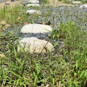 豊田の石場建て8 割栗敷玉石基礎