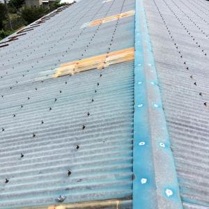 ジムの屋根修理