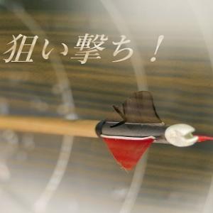 中京11Rアニバーサリーステークス、3連複5点完全予想!