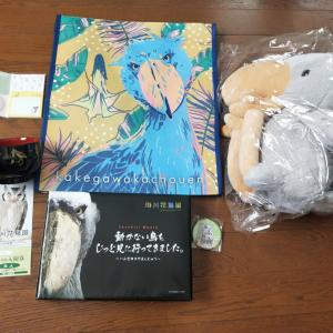 掛川花鳥園のキャンペーングッズが届きました〜