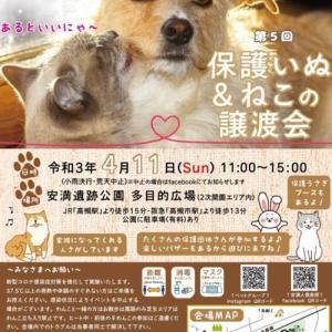 大阪・高槻市 『安満遺跡公園』イベントに参加します!