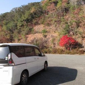小笠神社から小笠山