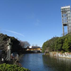 浜名湖ガーデンパークお散歩
