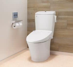 雑感・・・トイレ詰まり