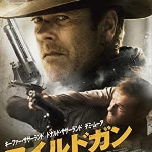 映画「ワイルドガン」(2015)