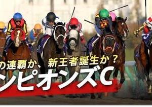 今週の追っかけ馬(12月5日・6日)