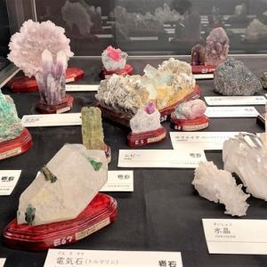 タモリさんにも観てもらいたい「岩石展」
