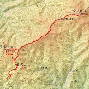 笹の藪漕ぎで有名な中ア南部の二百名山、安平路山山行記録速報(7月13日山行記録速報)