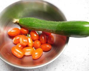 今日の収穫 キュウリ・ミニトマト