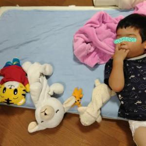2歳9ヶ月のお昼寝スタイル