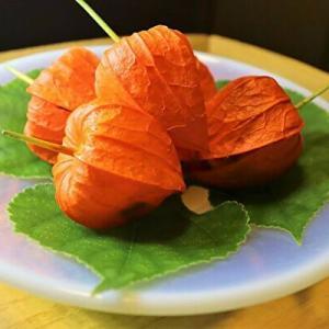 「菊乃井」凄すぎるランチに沈黙!世界に誇れる和食です(ミシュラン掲載)