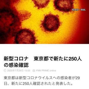 東京都 新たに250人の感染確認 新型コロナ(200729)
