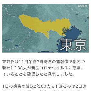 東京都309人コロナ感染確認/熱中症に気を付けて(200811)