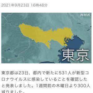 東京都 新たに531人の感染確認 新型コロナ(210923)