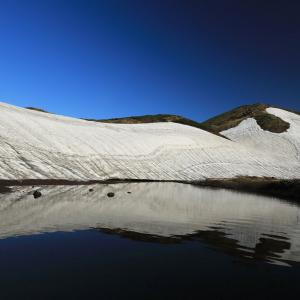 秋田駒ヶ岳の雪渓