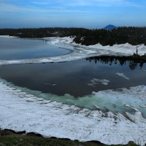 氷解した八幡沼