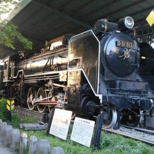 蒸気機関車D51 513(板橋区城北交通公園)