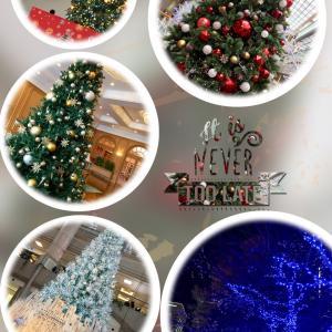 ●メリークリスマス♪横浜みなとみらい桜木町