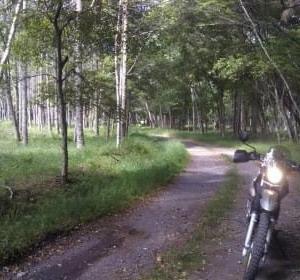 信州中部☆林道物見遊山2020夏(④めざせ長門牧場)