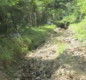 信州中部☆林道物見遊山2020夏(⑥幻の林道)