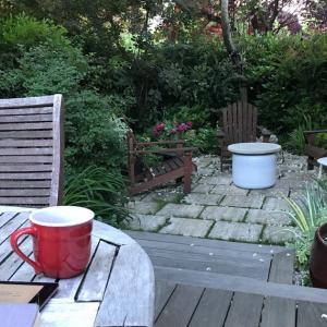 エゴノキの庭つきリゾートと冷たい姫様
