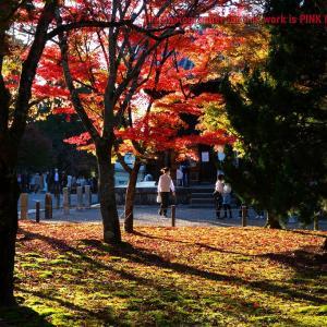 GoTo☆古都の旅・・・➍