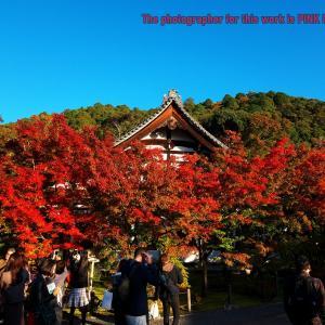 GoTo☆古都の旅・・・➎