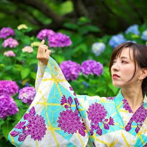 紫陽花~梅雨と夏の間に・・・AM②