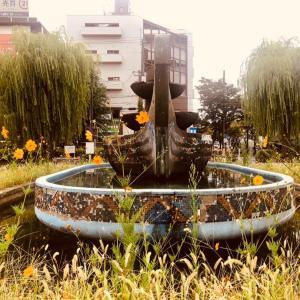 毎月第3土曜日は  アリオ八尾のカルチャークラブで  暮らしにhana*を咲かせましょ。