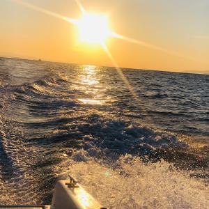 ハマチとキスを夫の舟で釣りました!