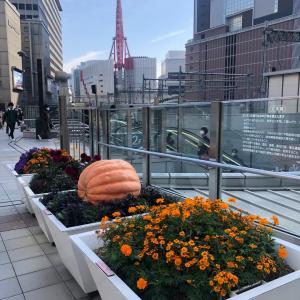 大阪シティアカデミー教室後、「手わざassociate関西」の役員会がありました