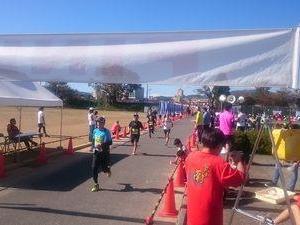 第37回菊花マラソン 10kmの参戦レポート