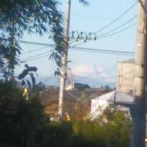 富士山の季節