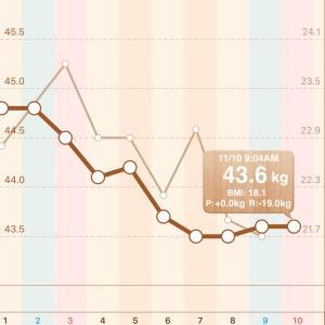 5ヶ月経過 体重グラフ