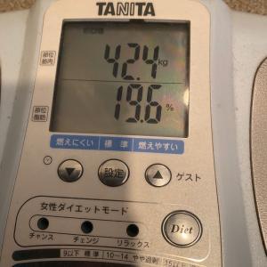 【180日目】-0.1kg 42.4kg 横濱白煉瓦