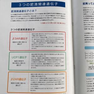 【252日目】2/16(日)肥満遺伝子検査結果