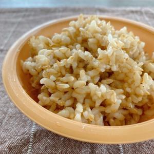 12/10(木)玄米ごはんとカップ麺  46.90kg →