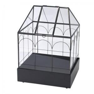 アイアンハウス型ガラステラリウム~♥