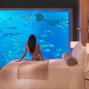 ☆茨城県ひたちなか大洗リゾート構想「水族館ホテル建設」に反対します。あなたのご意見を、茨城県に!
