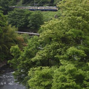 鳥居川新緑に映えるスカ色