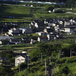 スーパービュー踊り子251系廃車回送を桑ノ原信号場俯瞰で撮!!