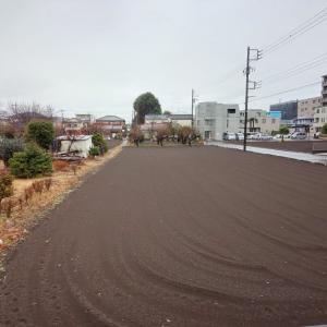 1月24日 本日は大雪ではなく雨の一日となりホッとしました