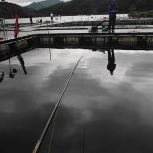 釣行記フィッシングレインボー ~ 2020.7.15