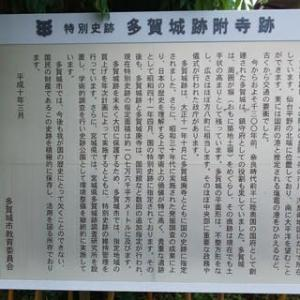 日本100名城に行こう! No.7 多賀城