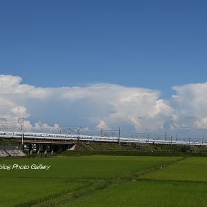 夏雲と新幹線7