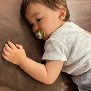 息子の発熱