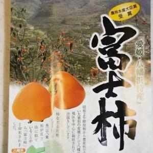 今年も富士柿を♪