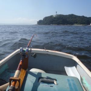 8月2日観音崎、意地で釣った真鯛